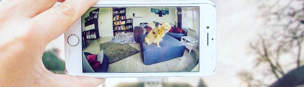Furbo DogCam – Hund stalken leicht gemacht