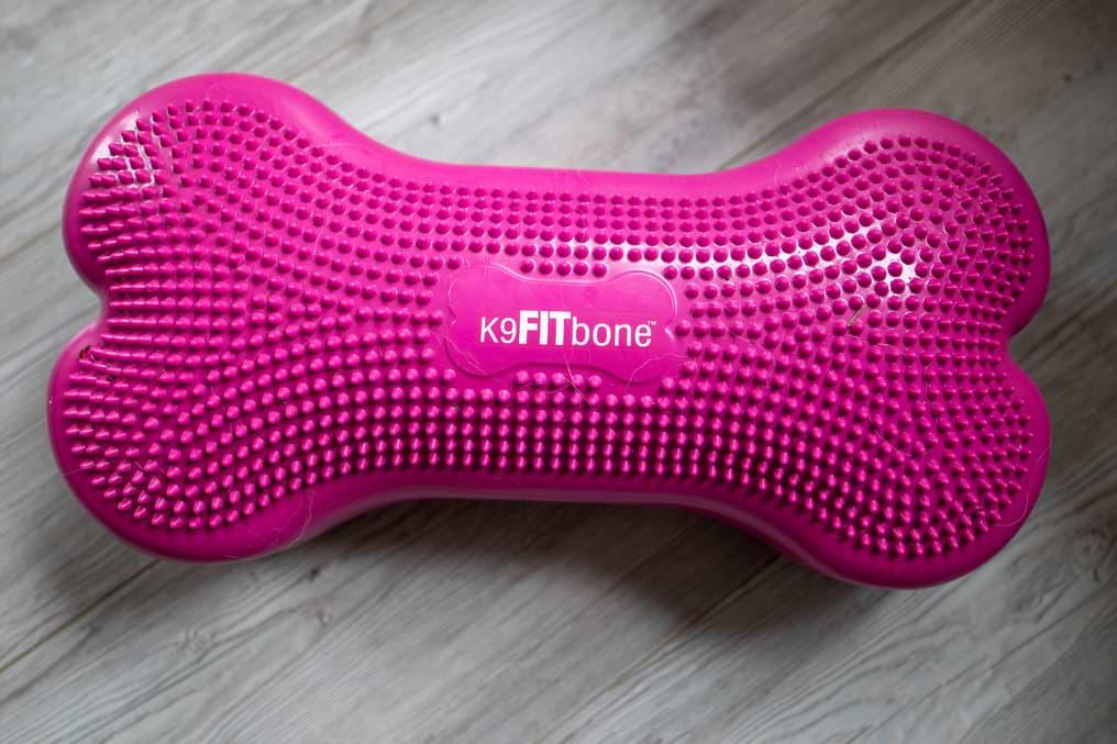 K9 Fitbone in pink