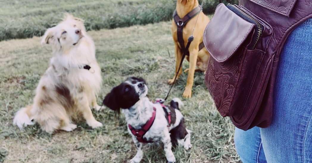 HipBag von Heartdogz