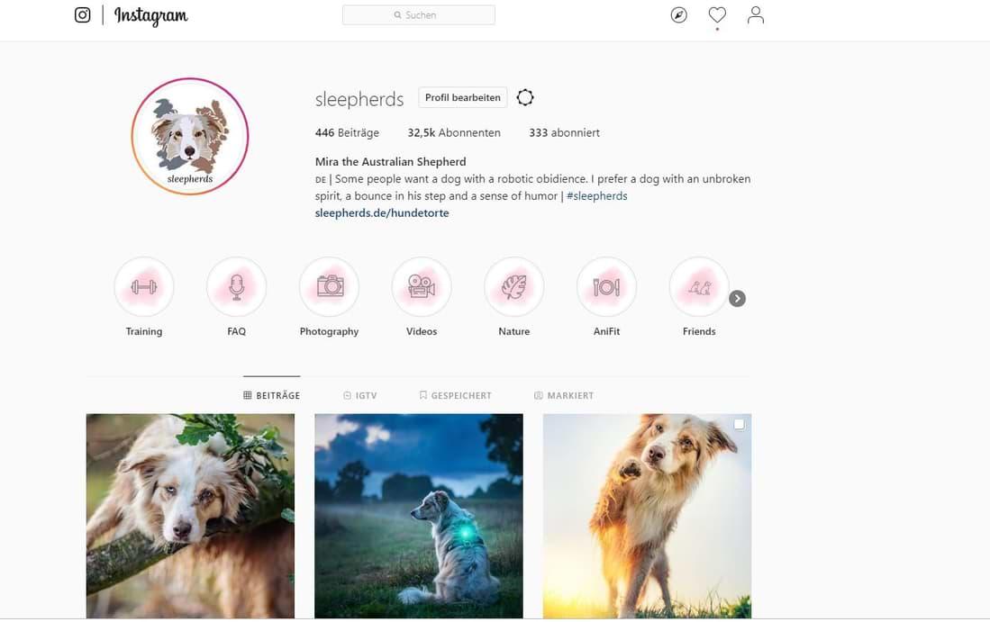 Unser Instagram-Account Sleepherds