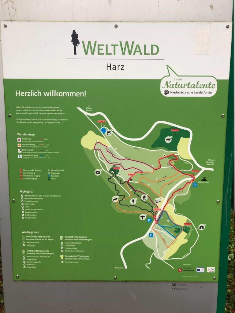 Weltwald Harz Übersicht