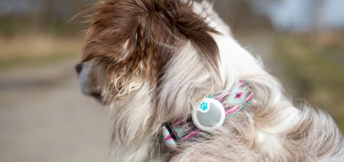 Sure Petcare Animo Tracker