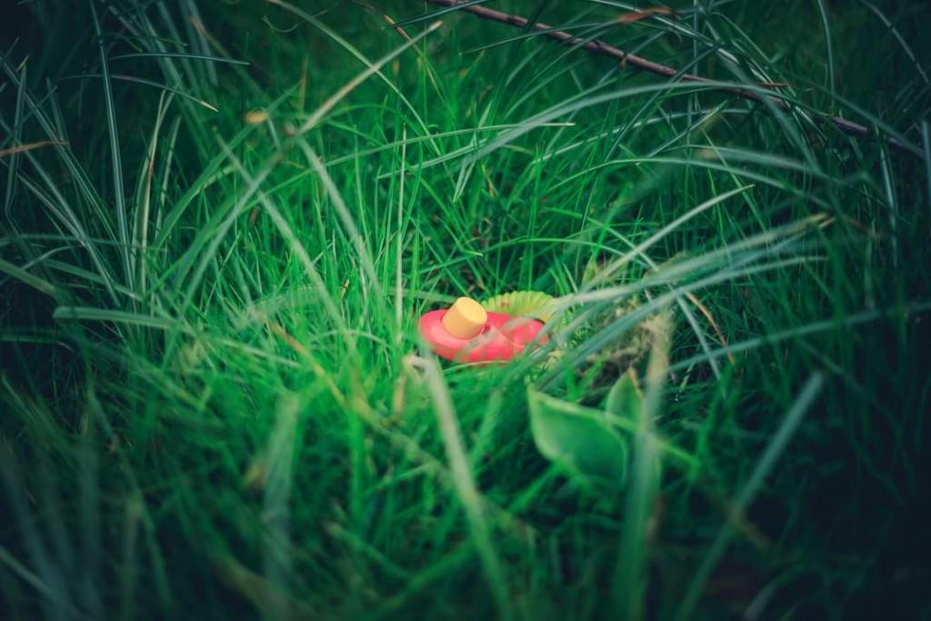 Clicker liegt im Gras