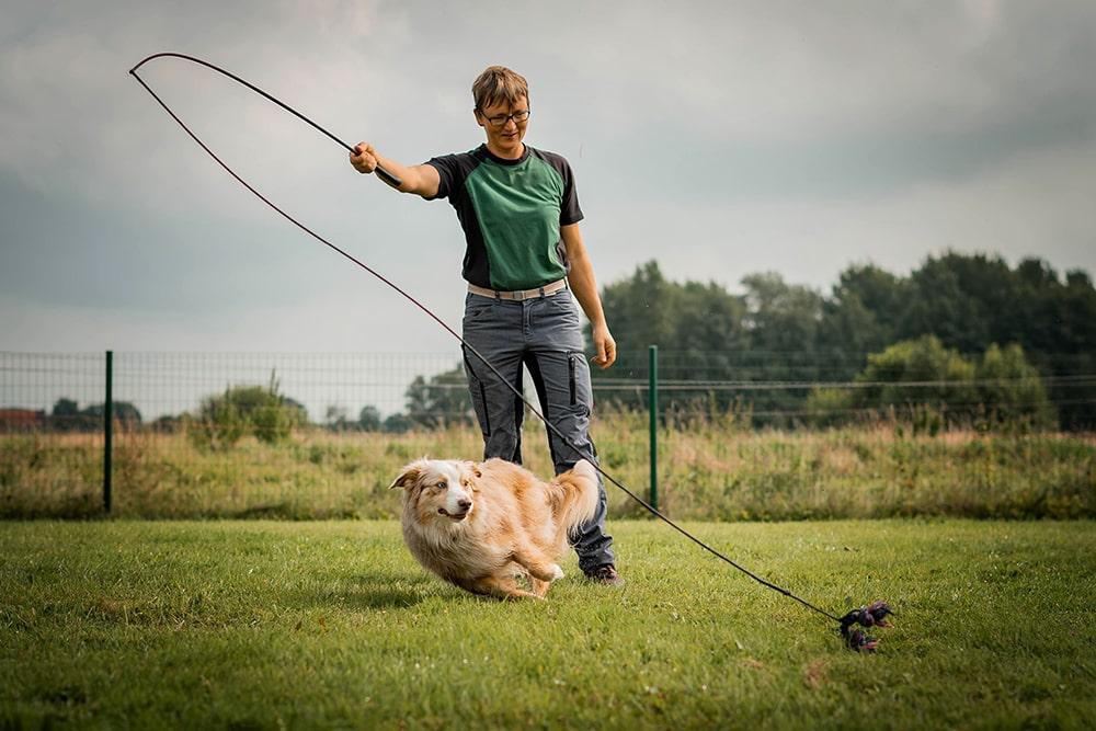 Reizangel Hundetraining